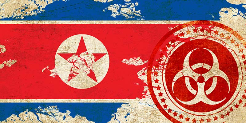 northkoreavirus